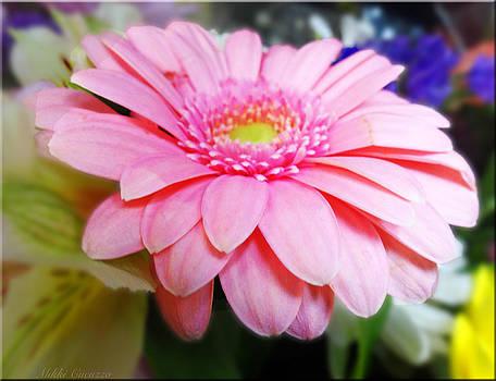 Spring Bouquet by Mikki Cucuzzo