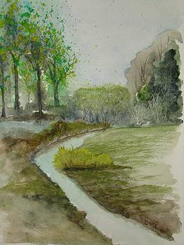 Spring Creek by Chip Picott