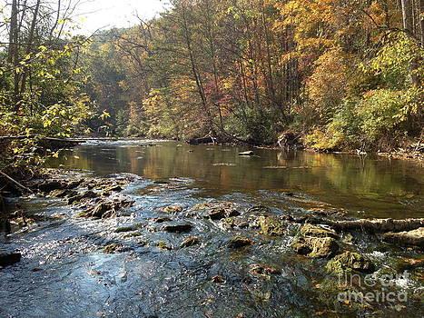 Spring Creek Fall by Mark Messenger