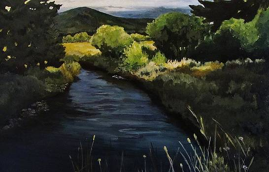 Spring Creek by Suzanne Tynes