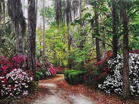 Spring Drive I by Debra Laughlin
