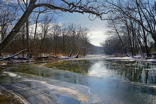 Spring early thaw by Dick Wood
