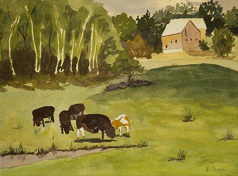 Spring Farm by Peggy Poppe