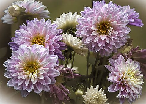 Spring Flowers by Joe McCormack Jr