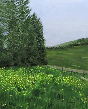 Spring Flowers by Linda Feinberg