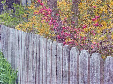 Spring Garden by Michelle Griffin