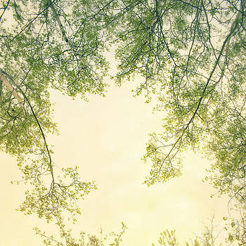 spring green IV by Priska Wettstein