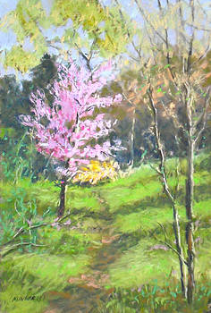 Spring Has Sprung by Julie Mayser