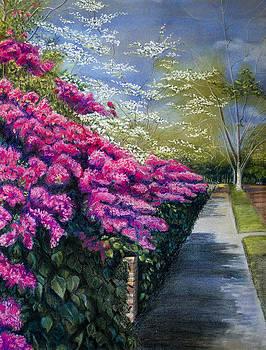 spring in Dallas by Ida Yavari