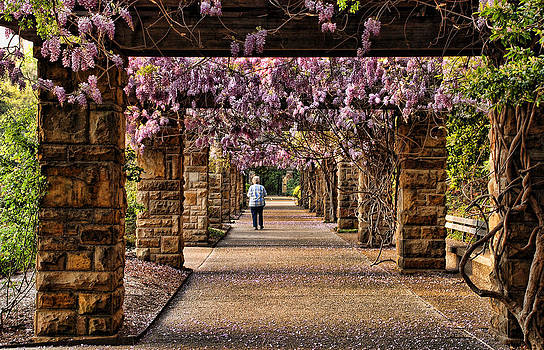 Spring in Fort Worth Botanic Garden by Janet Maloy