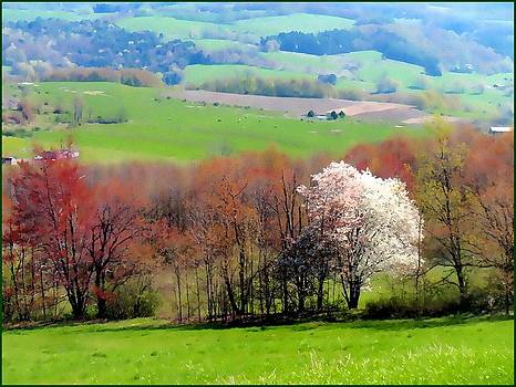 Spring in the Country by Linda Seifried