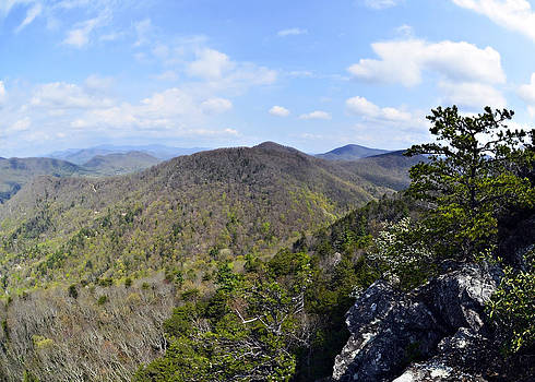 Spring in the Mountains by Susan Leggett