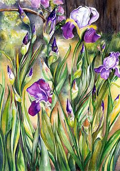 Spring Iris by Nadine Dennis