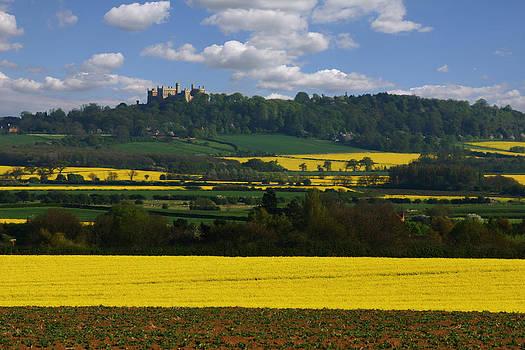 Spring Landscape by Gillian Dernie