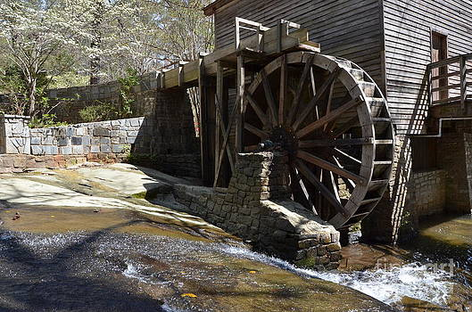 Spring Mill by Adelmo Leite de Sa