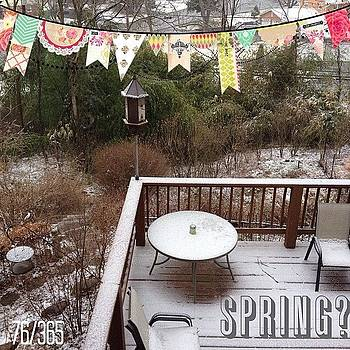 Spring? Nope It's Winter Storm Wiley by Teresa Mucha