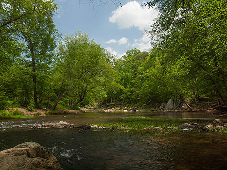 Spring on the Eno River by Kelvin Taylor