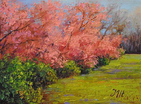 Spring. Part 2. Abundance. by Julia Utiasheva