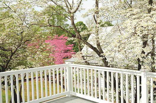 Spring Porch by Hans Castleberg