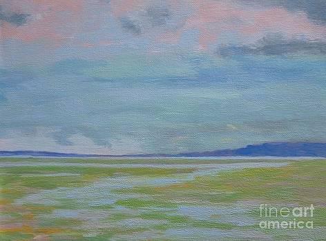 Spring Rain at Lake Jackson by Gail Kent