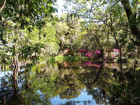 Charleston sc Spring Reflections by Ella Char