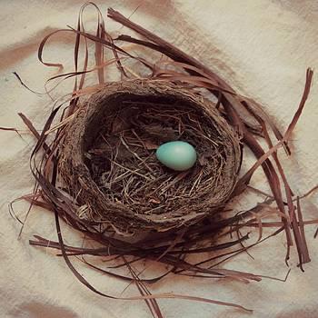 Spring Robin's Nest by Tammy Franck