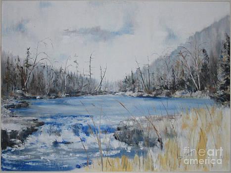 Spring Runoff by Steve Knapp