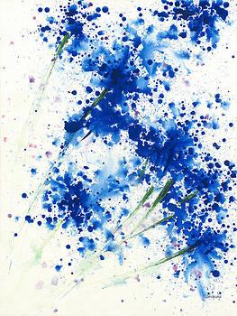 Spring Spots by Jerome Lawrence