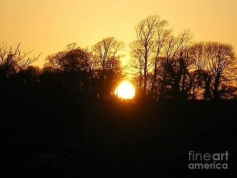 Spring Sunset. by Ann Fellows