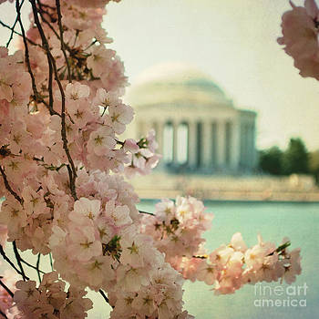 Spring Time in DC by Sharon Coty