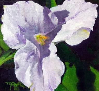 Spring Trillium by Maureen Ghetia