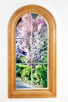Jo Ann Snover - Spring view