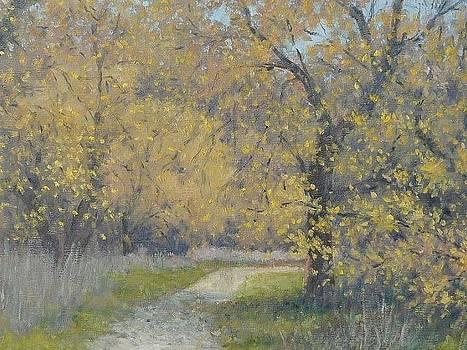 Spring Walk by Marv Anderson
