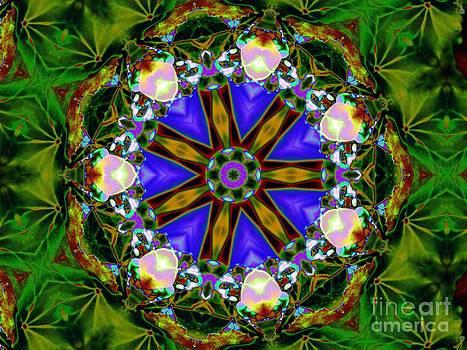 Spring wheel by Dana Hermanova