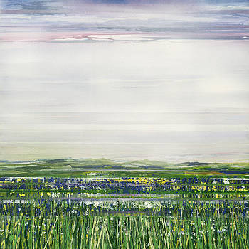 Spring Wild Flowers Redesdale by Mike   Bell