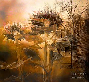 Spring by Yanni Theodorou