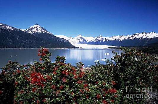 James Brunker - Springtime at Perito Moreno