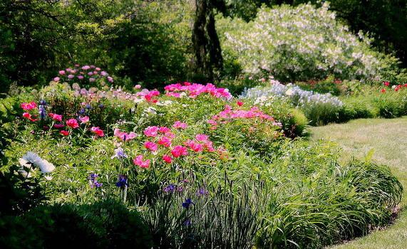 Rosanne Jordan - Springtime Garden Delights