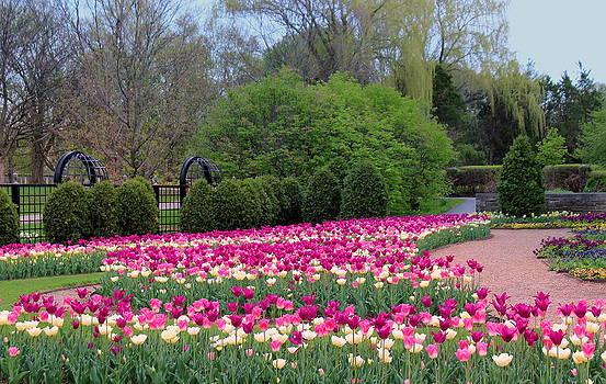 Rosanne Jordan - Springtime Garden Dream
