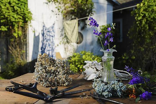 Springtime Gardening by Damian Hevia