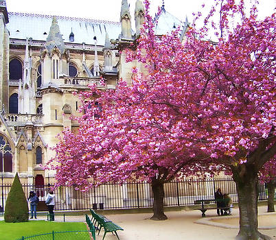 Springtime in Paris by Christiane Kingsley