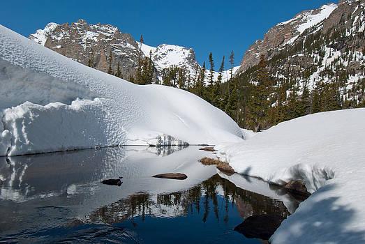 Springtime in the Colorado Rockies by Cascade Colors