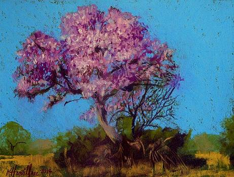 Springtime in the Pantanal by Kitty Harvill