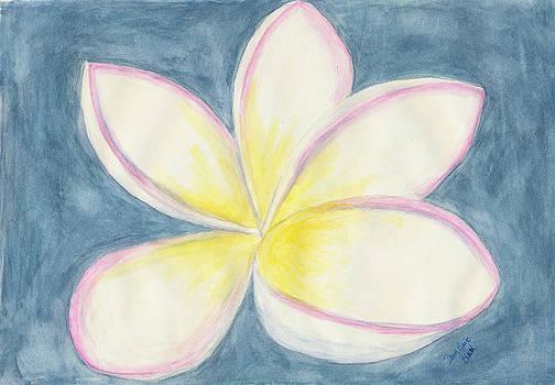 Dawn Marie Black - Springtime Perfection