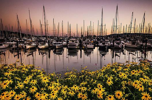 Paul Conrad - Squalicum Harbor After Sunset