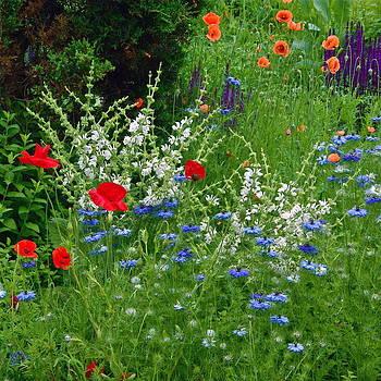 Byron Varvarigos - Squarely Spring Floral Garden