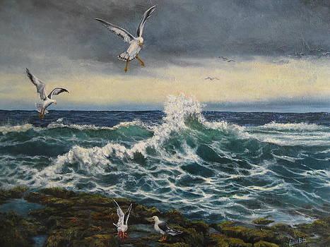 Squawking Gull by Carol Bitz