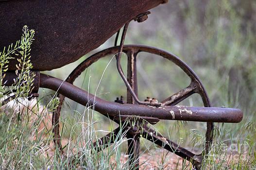 Squeaky Wheel  by Juls Adams