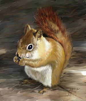Squirrel  by Edith Hicks