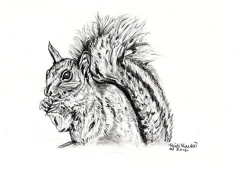 Squirrel  by Heidi Kunkel